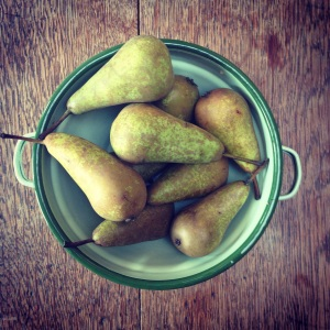 Seasonal Sweet Succulent Pears