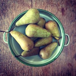 Seasonal Sweet Succulent Pears