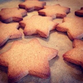 Festive Gingerbread Stars